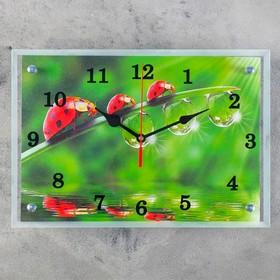 """Часы настенные, серия: Животный мир, """"Божьи коровки и роса"""" микс 25х35 см"""