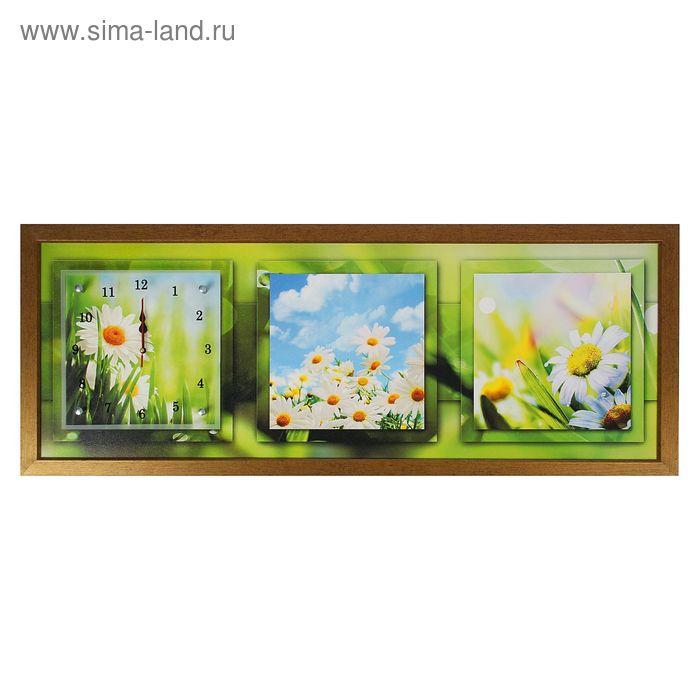 """Часы-картина настенные """"Небо и ромашки"""", 35х100 см  микс"""