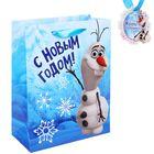 """Пакет ламинат вертикальный """"Веселого праздника"""", Холодное сердце, 18х23 см, + мини-открытка"""