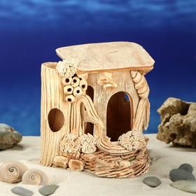 Scenery for the Turtle Aquarium.