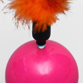 Roly-poly toy for cats with feathers, a mix of colors