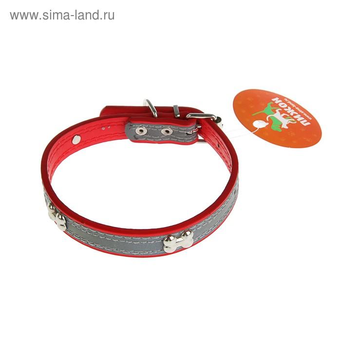 Ошейник со светоотражающей полосой и косточками, 45 х 2 см, красный