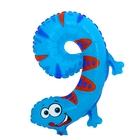 "Ball plastic 18"" Figure 9, the lizard"