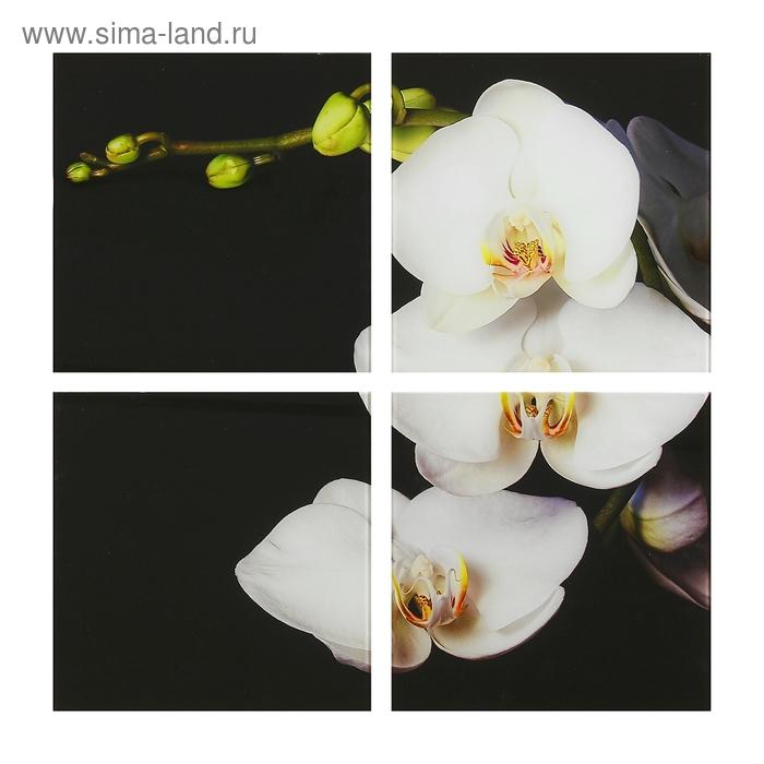 """Модульная картина на стекле """"Стильная орхидея"""""""