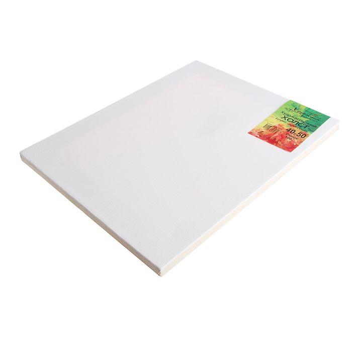 Холст на подрамнике хлопок 100% акриловый грунт 2*40*50 см мелкозернистый, 210г/м²