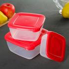 Набор пищевых контейнеров Polar, 3 шт: 460 мл, 950 мл, 1,5 л, цвет МИКС