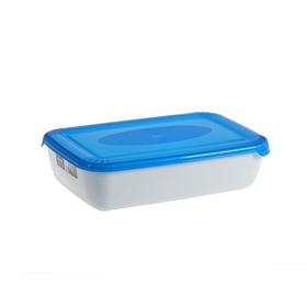 Контейнер пищевой Plast team Polar Micro Wave, 3 л, цвет МИКС
