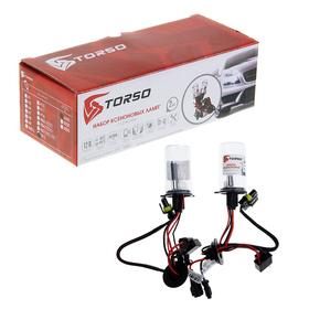 Комплект ксеноновых ламп TORSO H4/L, с галогенной лампой, для блоков DC, 12 В, 4300 К, 2шт.