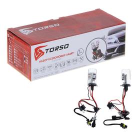 Комплект ксеноновых ламп TORSO H4/L, с галогенной лампой, для блоков DC, 12 В, 5000 К, 2шт.