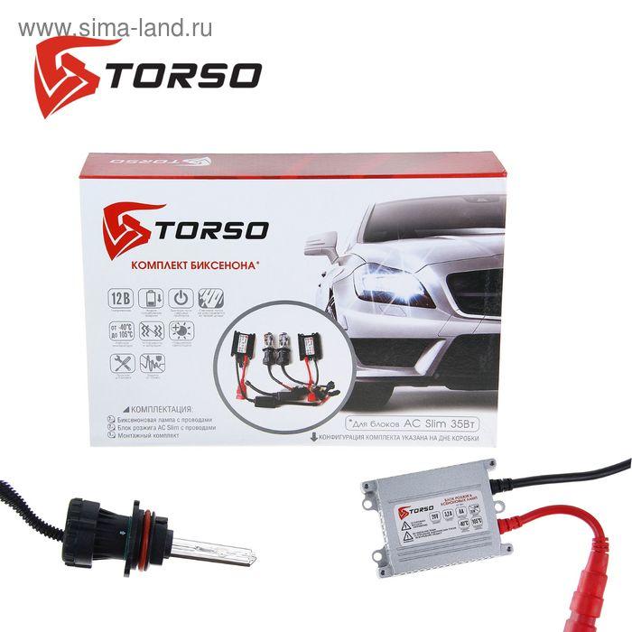 Комплект биксенона TORSO, блок розжига AC Slim, 35 Вт, 12 В, цоколь HB5(9007), 4300 К