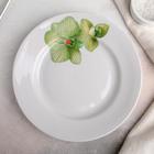 """Тарелка мелкая 20 см с гладким краем """"Орхидея зеленая"""""""