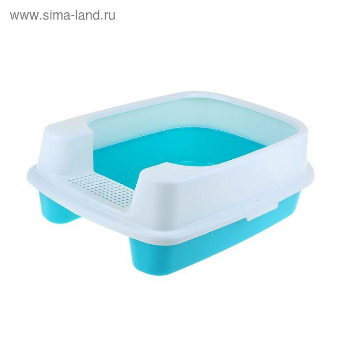 Туалет большой с порогом и высоким съемным бортом, 57 х 42 х 20 см,голубой/белый