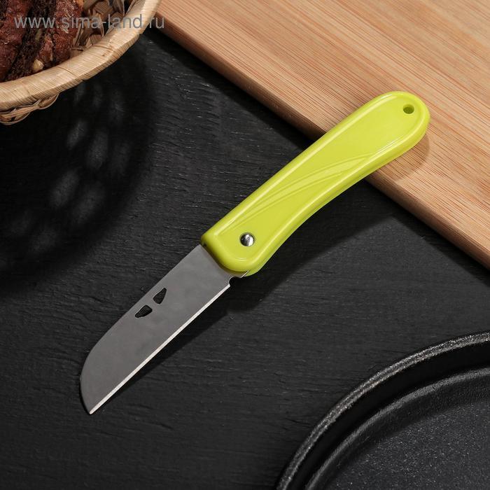Нож складной 7 см, цвета МИКС