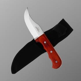Нож туристический 16 см, в чехле, деревянная рукоять с выемками в Донецке