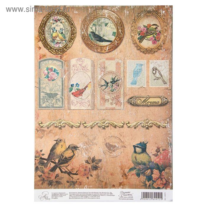 "Бумага для творчества ""Таинственный сад "", односторонняя, 21 х 29,7 см, 80 г/м2"