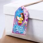 """Шильдик на подарок (6 шт.) """"Поверь в сказки"""": Принцессы, 5x9 см"""