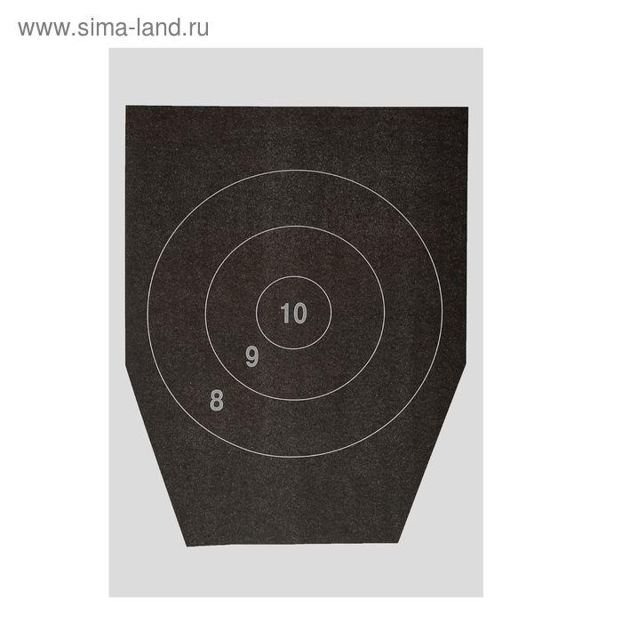 Мишень № 5а с кругами, 230Х300, 1 шт