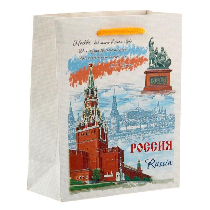Пакет вертикальный S «Россия»