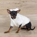Шубка белая с капюшоном-ушками для собак, размер S (ДС 21 см, ОГ 34 см, ОШ 24 см)
