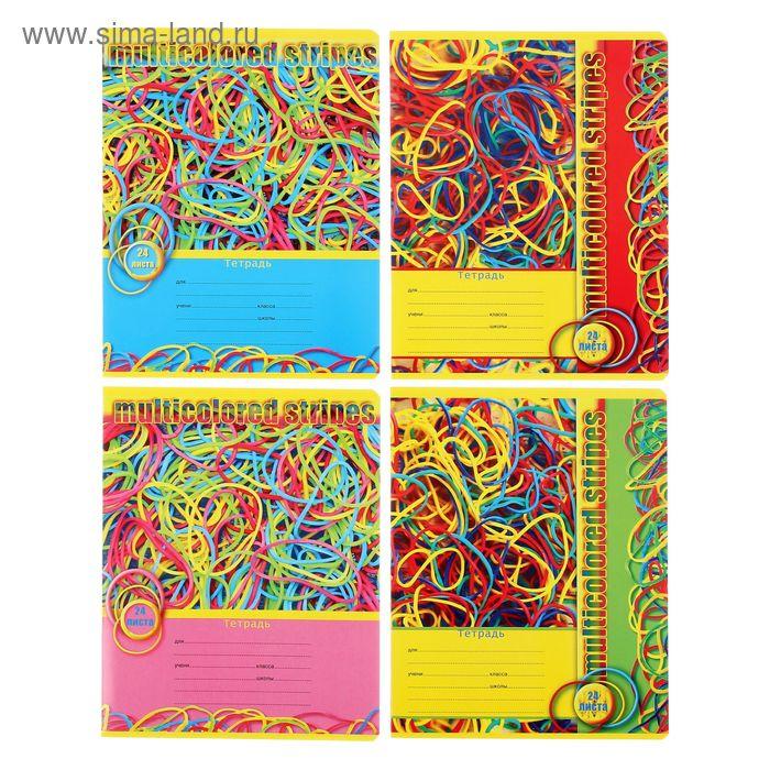 Тетрадь 24 листа клетка Rubber hobby, картонная обложка, 4 вида МИКС