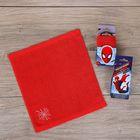 Полотенце в открытке, Человек-Паук