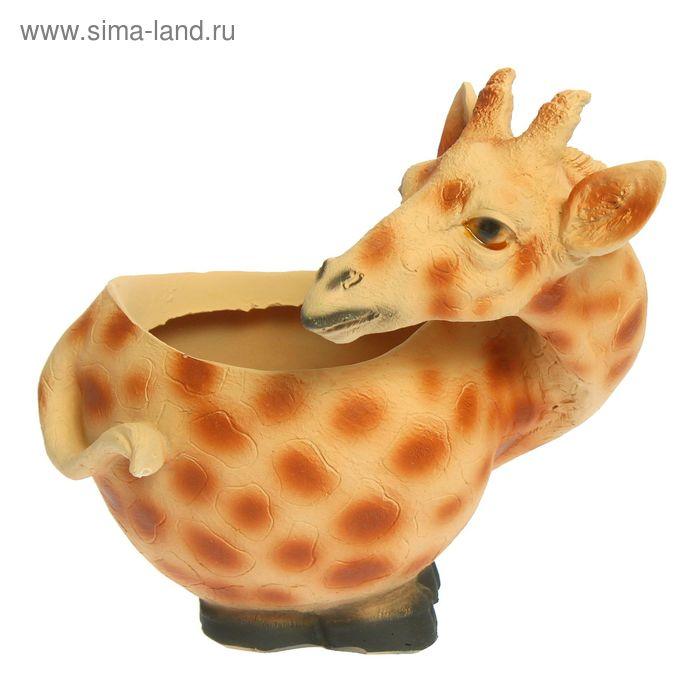 """Фигурное кашпо """"Жираф"""""""