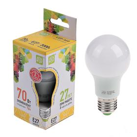 Лампа светодиодная ASD, Е27, 7 Вт, 210 - 240 В, 3000 К