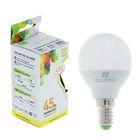 """Лампа светодиодная ASD, G45, 5 Вт, Е14, 160-260 В, 3000 К, теплый белый, """"шар"""""""