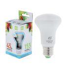 Лампа светодиодная направленного света ASD R63, Е27, 5 Вт, 230 В, 4000 К