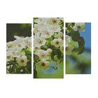 """Модульная картина на подрамнике """"Ветка яблони"""", 2 шт. — 25,5×50, 30×60 см, 100×60 см"""