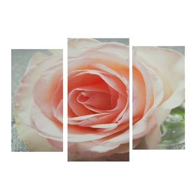 "Картина модульная на подрамнике ""Роза"" 2шт-25,5*50,5 см, 30,5*60 см, 60х100 см"