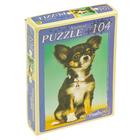 Пазл «Самый любимый щенок», 104 элемента