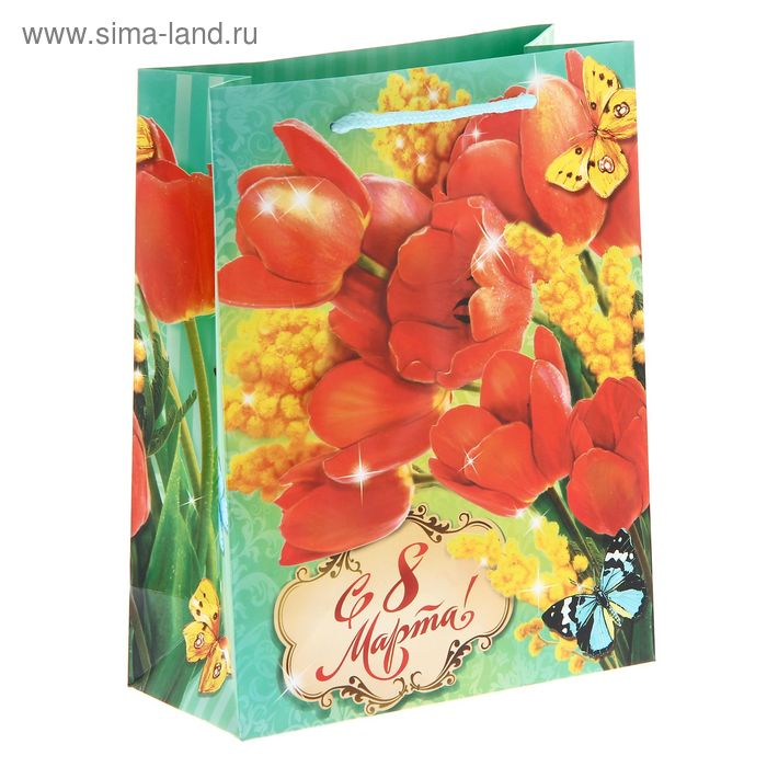 """Пакет ламинат вертикальный """"Тюльпаны"""", 18 х23 см"""