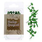 Набор брадсов «Весенняя зелень», 20 шт, 2,5 х 4 х 2 см