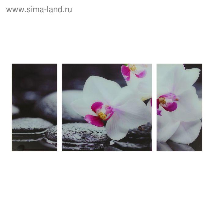 """Модульная картина на стекле """"Белый цветок"""""""