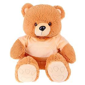 Мягкая игрушка «Медведь Эдди», в кофточке