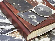 Родословная книга: для чего нужна и как сделать